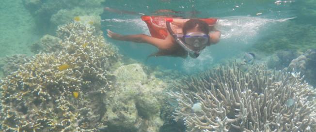 snorkel-super