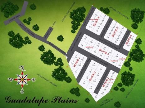 guada plains devt plan